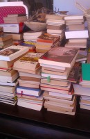 Los libros / Books